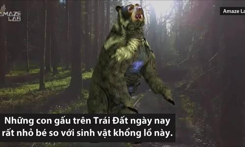 Loài gấu lớn nhất từng tồn tại trên Trái Đất