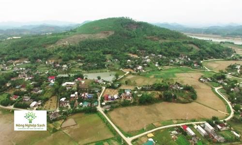 Nông dân Ninh Bình nuôi thỏ xuất khẩu