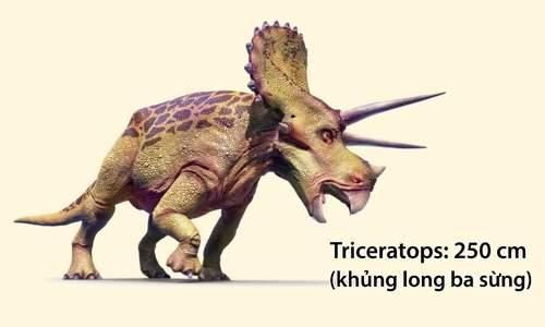 Những loài khủng long có hộp sọ lớn nhất