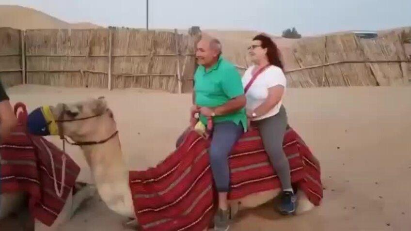 Du khách 'nặng ký' vô tư cưỡi lên lưng lạc đà