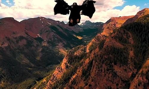 Đại bàng vàng giương vuốt quắp drone