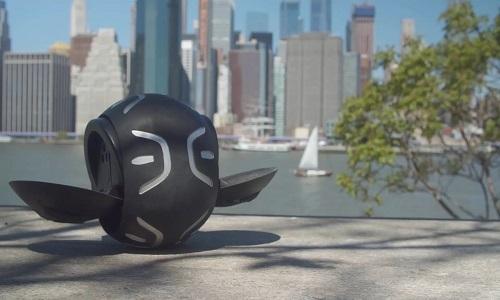 Quả bóng có thể chở người đi 19 km/h
