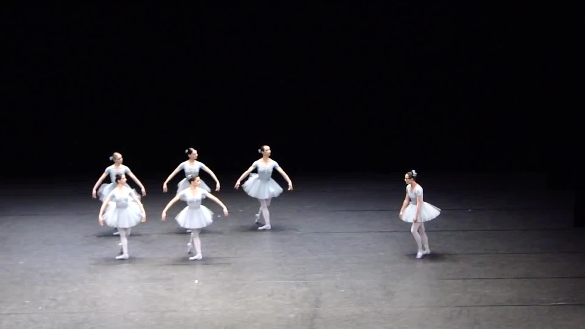 Đàn Thiên Nga múa quên bài 'có tổ chức'