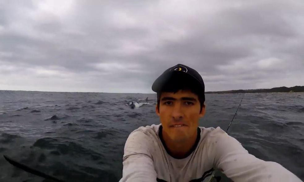 Cần thủ bị cá mập rượt đuổi khi chèo thuyền kayak
