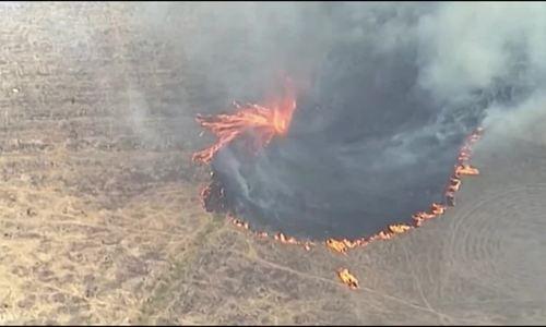 Vòi rồng lửa xuất hiện trong cháy rừng
