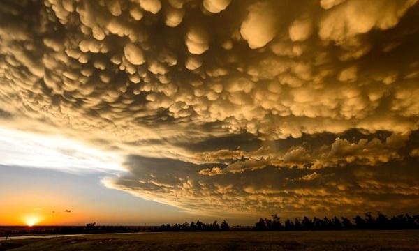 Mây vảy rồng báo trước cơn giông bão