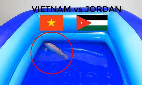 'Cá thần' dự đoán Việt Nam thắng Jordan