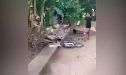 Bé trai cầu cứu mẹ vì bị gà đuổi