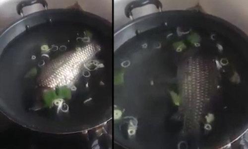 Nồi canh cá nguyên con của nàng dâu mới