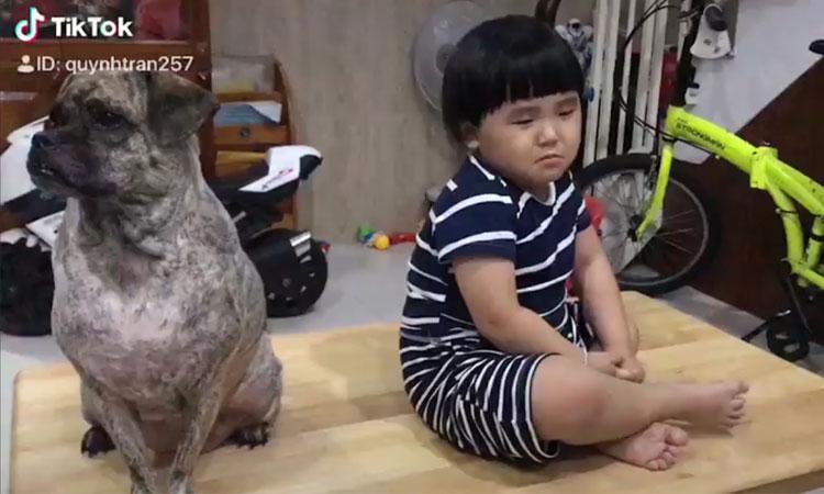 Cậu bé khóc khi bị cún cưng dỗi