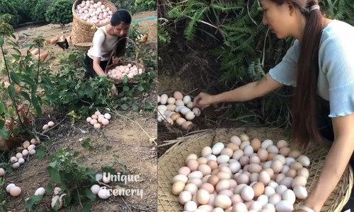 Cô gái mệt mỏi khi nhặt trứng gà trên đồi