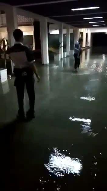 Mưa lớn gây ngập phủ tổng thống Indonesia