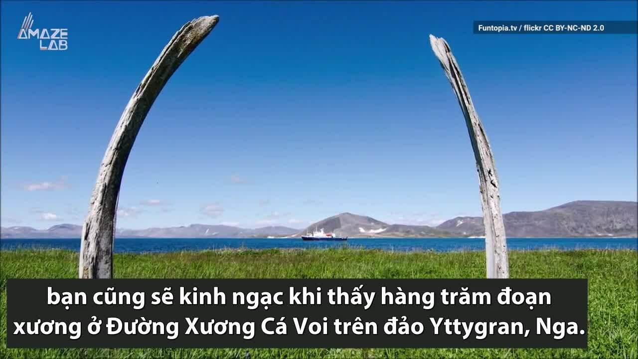 Con đường cổ dựng từ hàng trăm đoạn xương cá voi