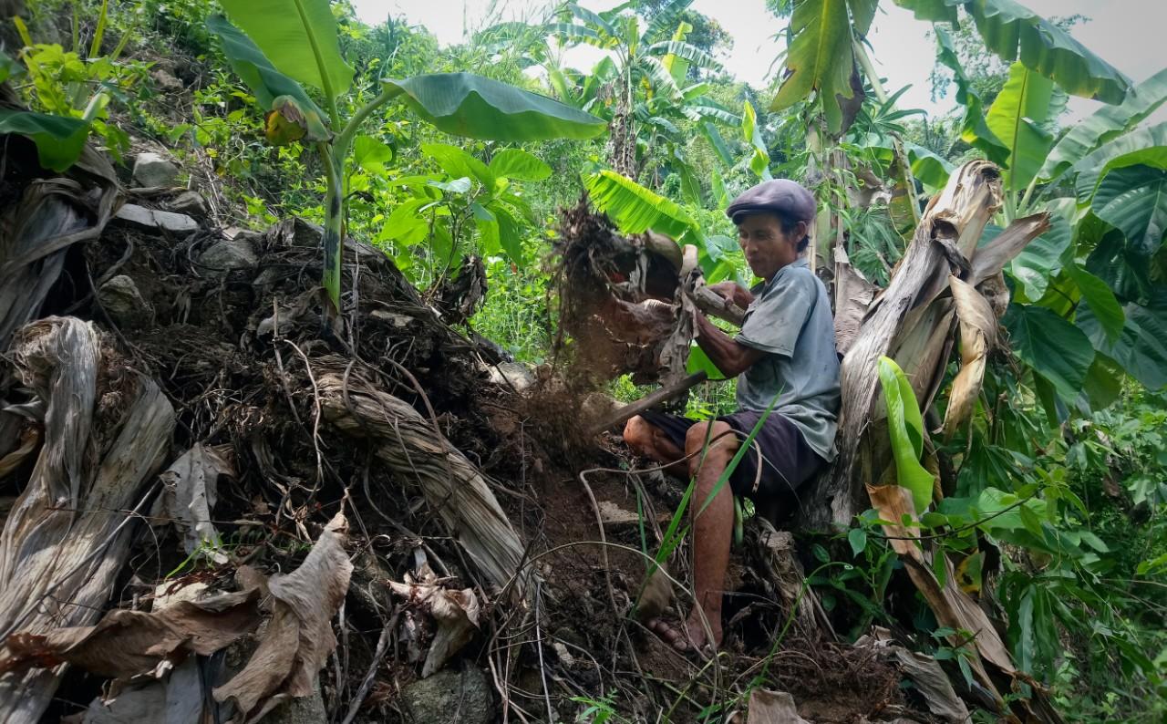 'Người rừng' sau 7 năm về làng