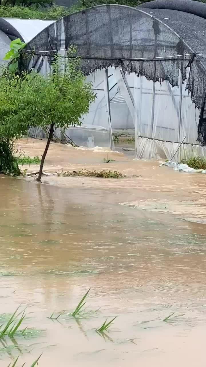 Người Việt ở Hàn chống chọi với mưa lũ lớn chưa từng thấy
