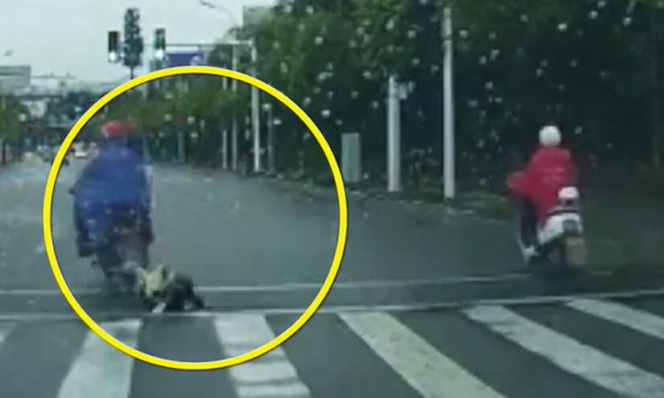 Bé gái rơi khỏi ghế sau xe máy