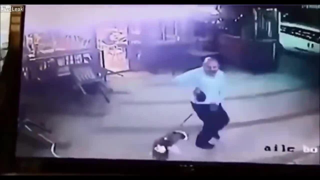 Chủ khốn đốn bảo vệ chó cưng khỏi mèo 