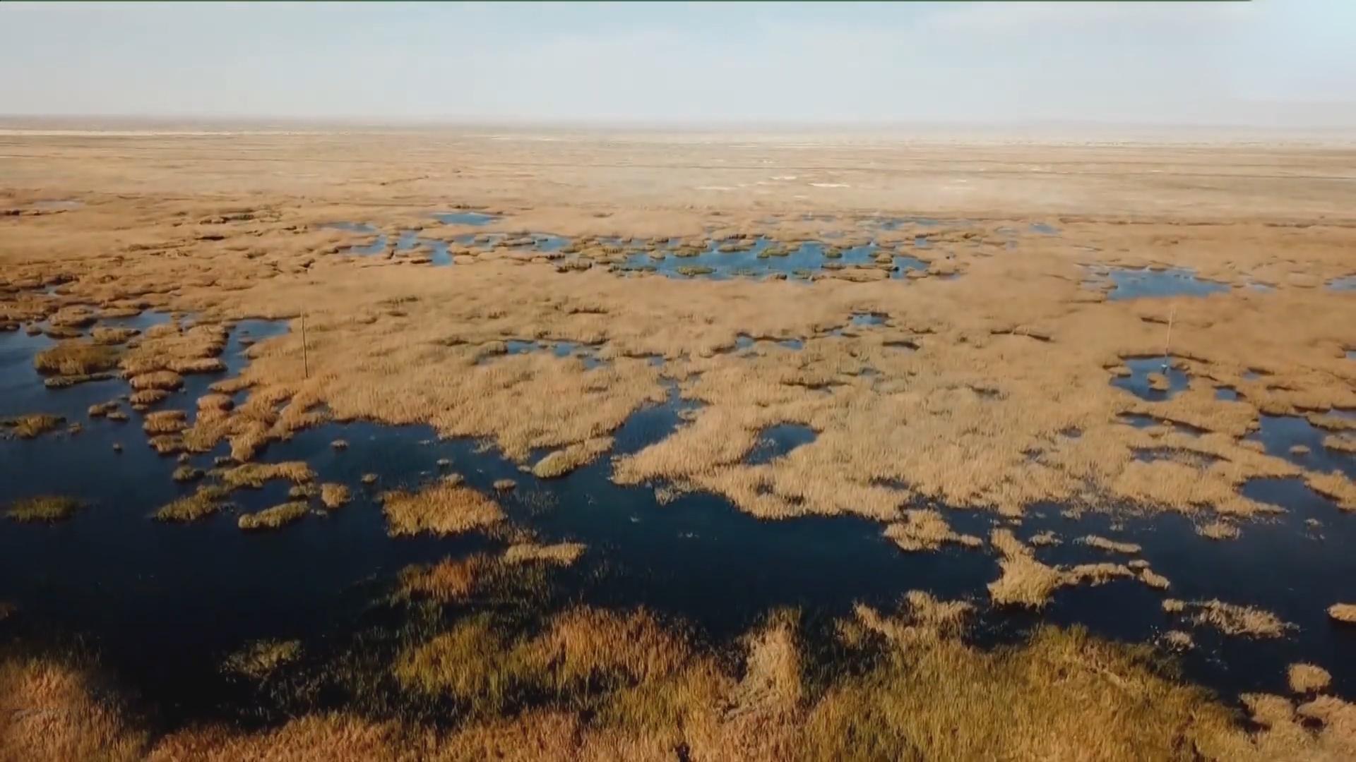 Hồ nước hồi sinh sau 50 năm khô cạn