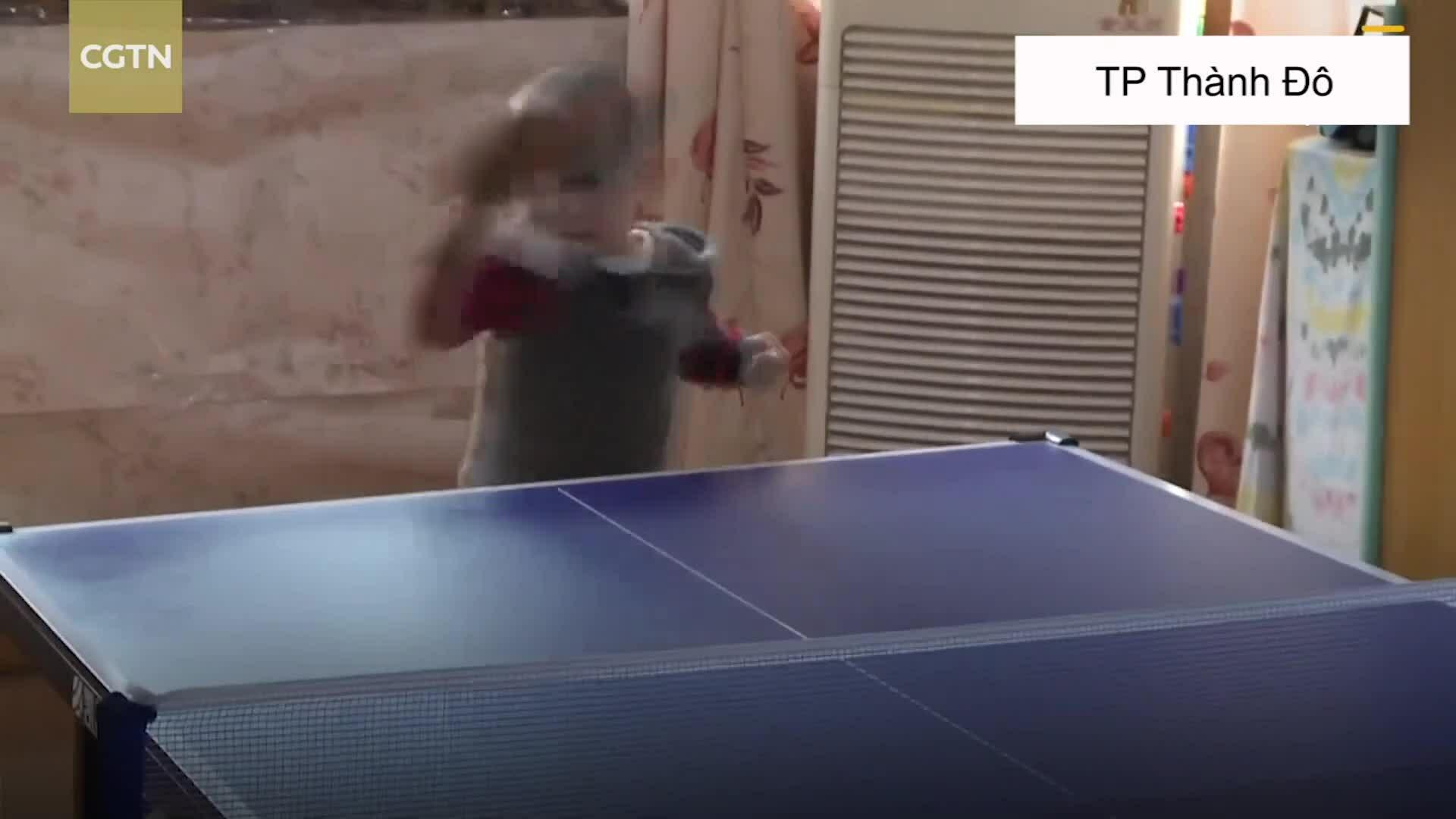 Bé 3 tuổi nổi tiếng nhờ tài chơi bóng bàn