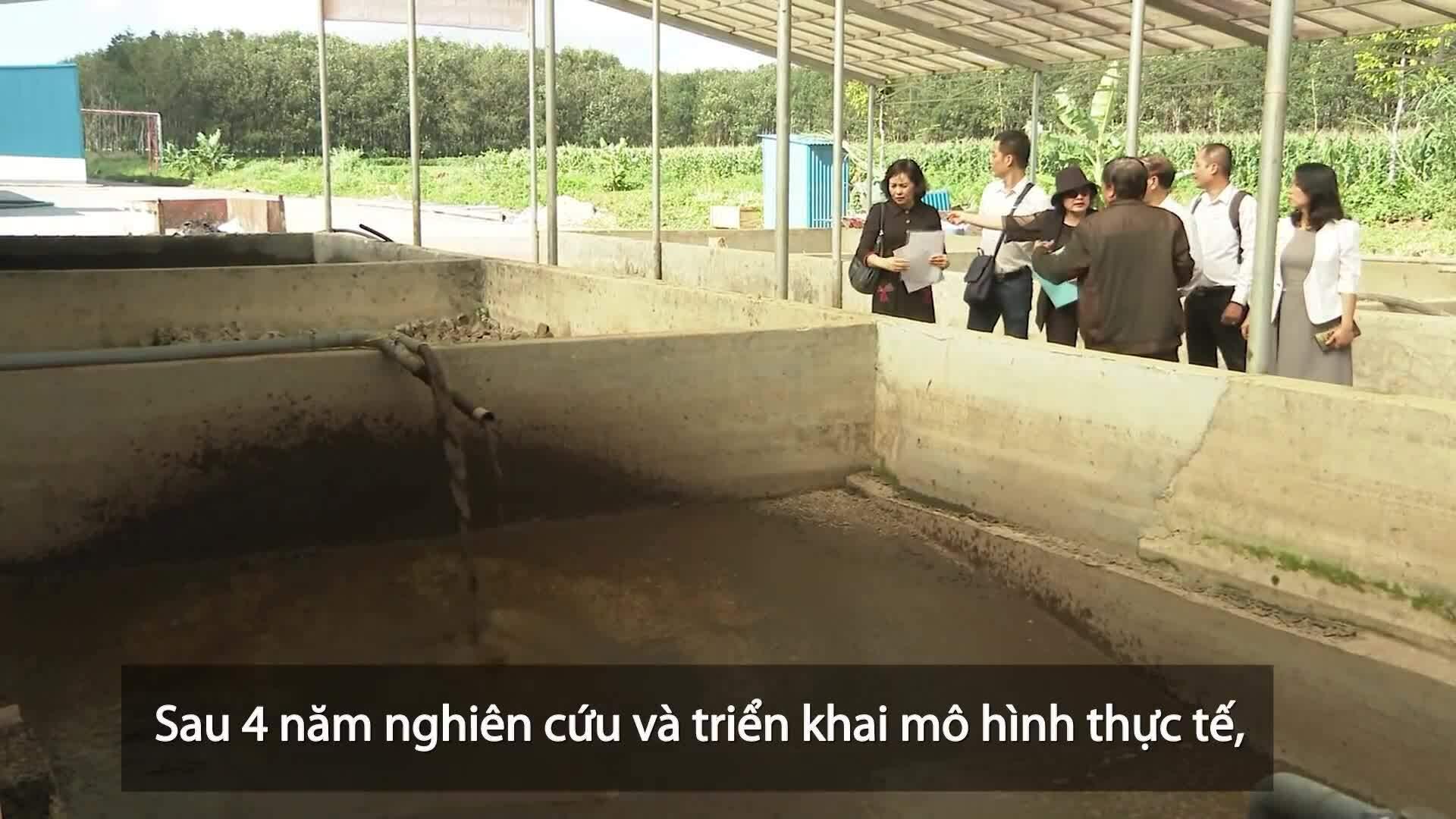 Công nghệ xử lý bùn thải tạo khí sinh học phát điện
