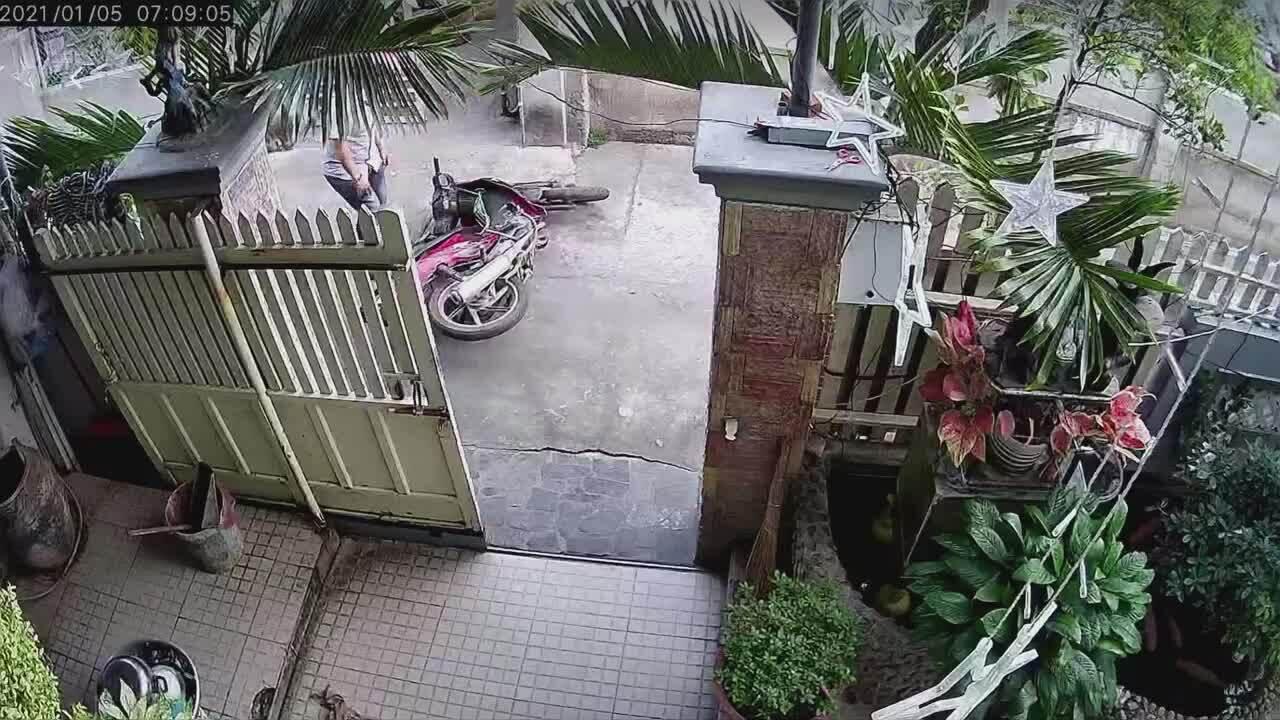 Chó tranh thủ chạy ra đường khi chủ mở cửa