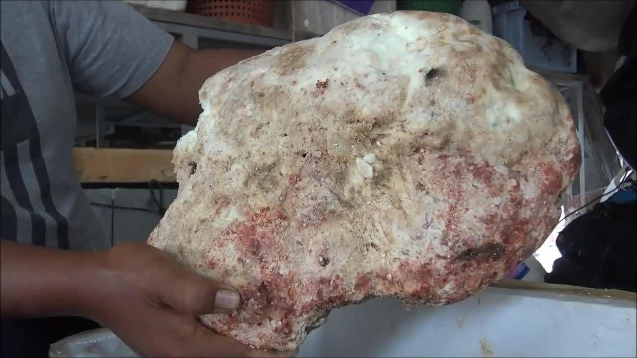 Ngư dân phát hiện khối long diên hương 230.000 USD