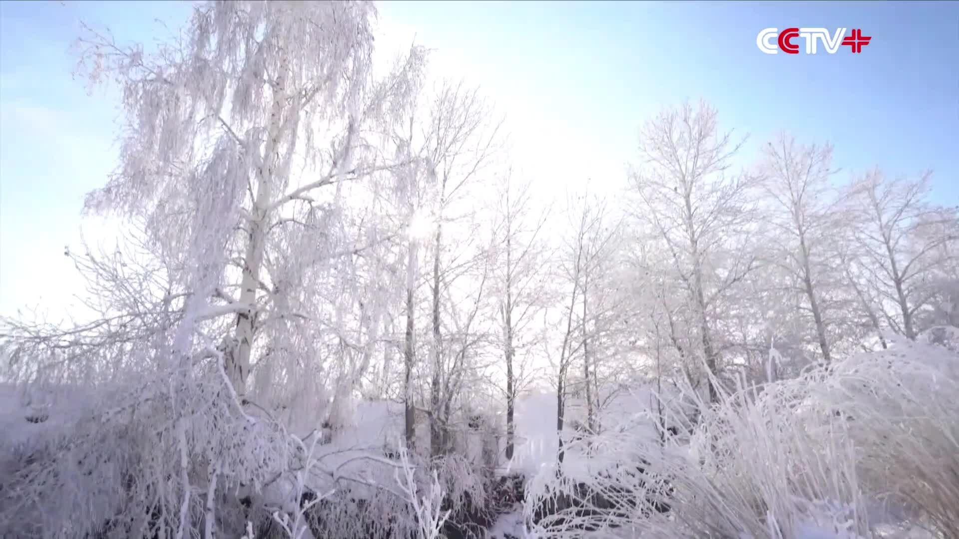 Tuyết, sương giá phủ trắng lưu vực sông