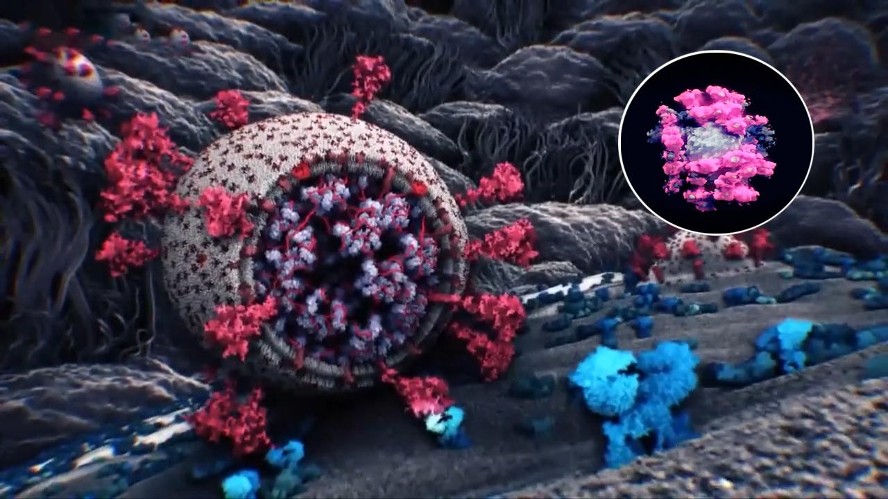 Hình ảnh 3D thực đầu tiên về phần tử SARS-CoV-2
