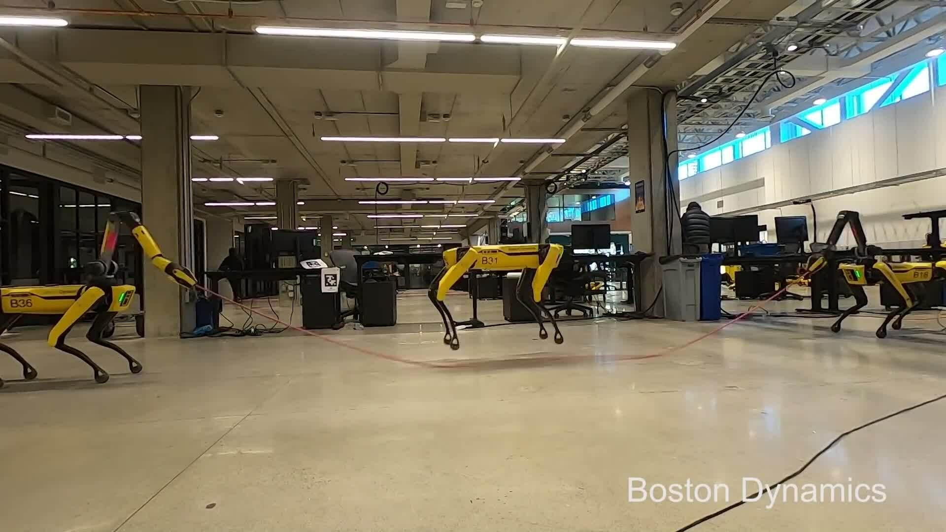 Chó robot trình diễn kỹ năng nhảy dây