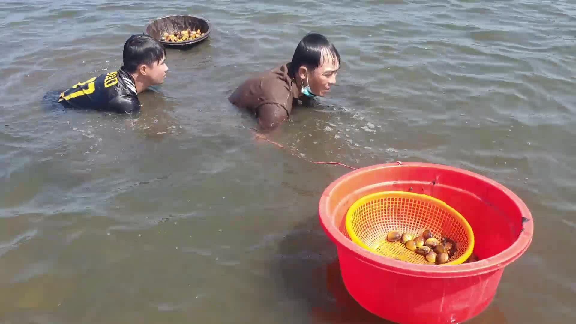 Người dân đổ ra sông bắt nghêu