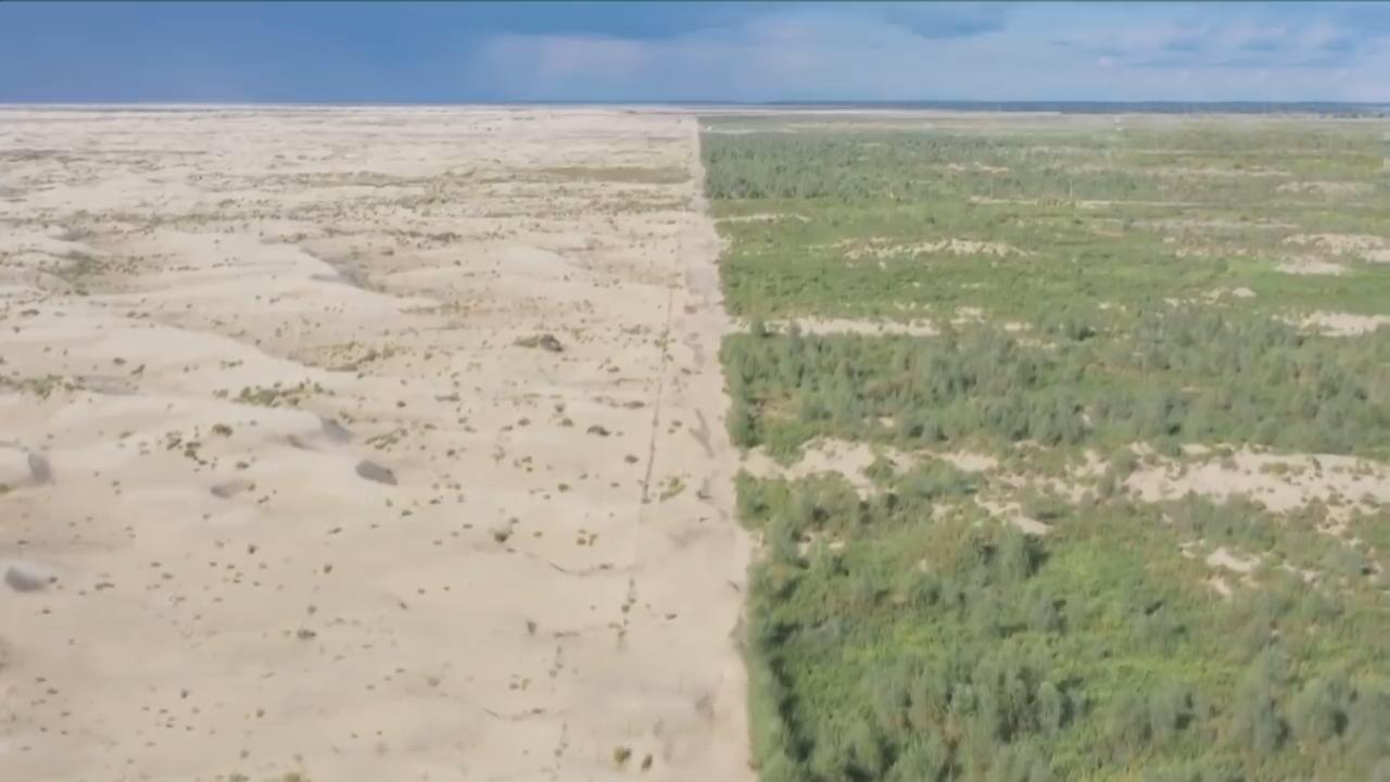 5 năm phủ xanh vùng nội địa trên sa mạc Taklimakan