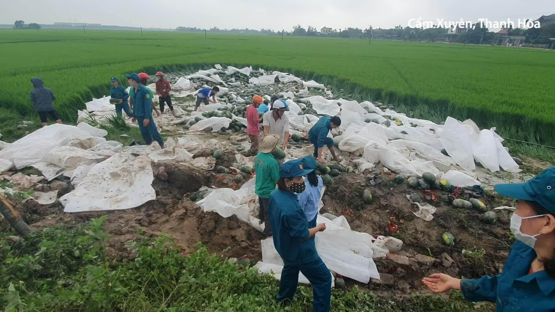 Người dân gom 20 tấn dưa hấu giúp tài xế sau tai nạn