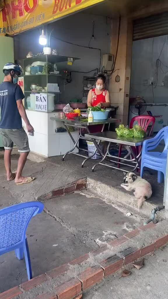 Chó cưng lấy tiền, đưa hàng cho khách phụ bà chủ