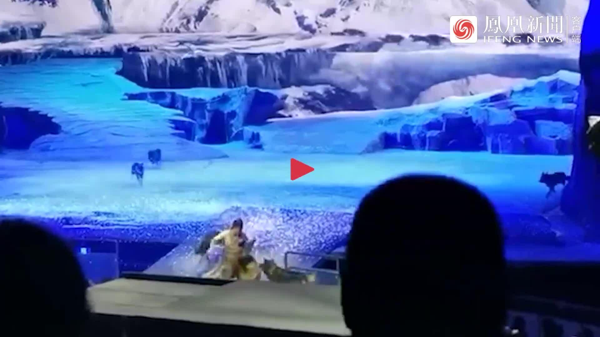 Chó sói rượt đuổi diễn viên ngay trên sân khấu