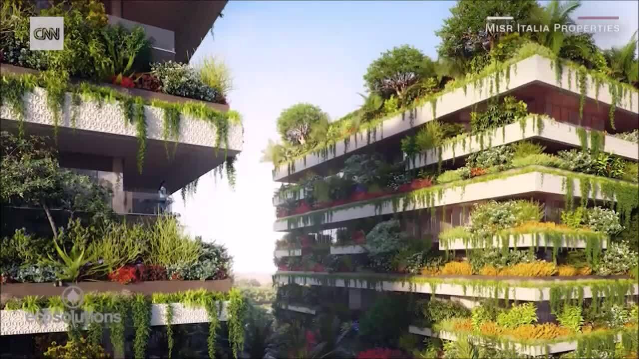 Khu vườn thẳng đứng tạo ra 8 tấn oxy mỗi năm