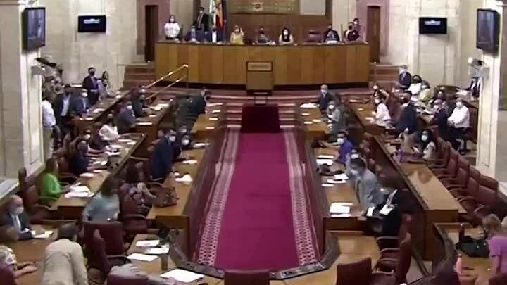 Nghị viện Tây Ban Nha náo loạn vì chuột