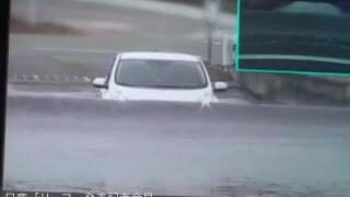 Nissan Leaf lội nước năm 2010