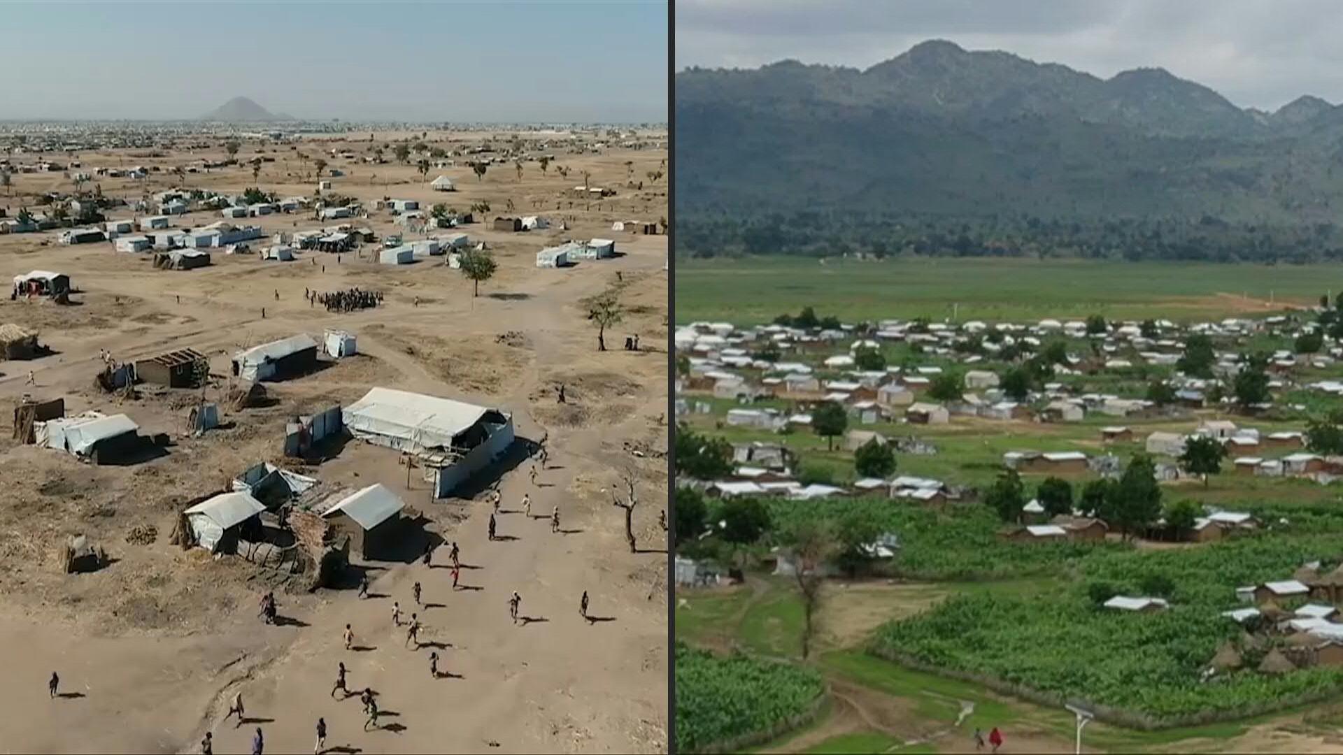Người tị nạn phủ xanh vùng bán sa mạc ở Camaroon