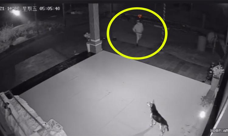 Trộm chạy thục mạng vì được chủ nhà đón ngay cửa